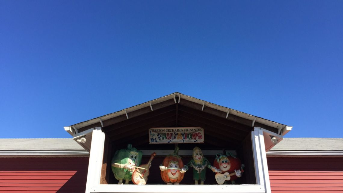 New York in The Fall: Barton Orchards